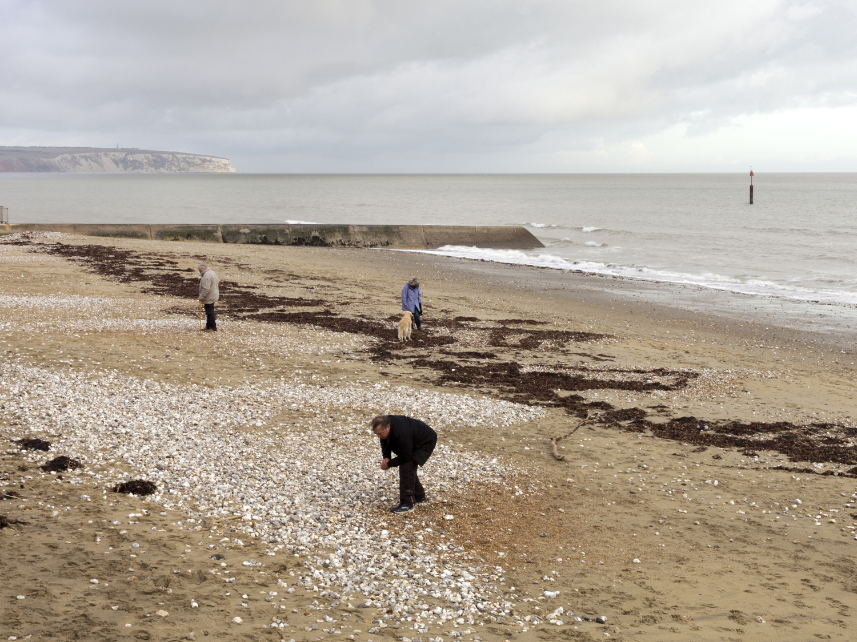 Sandown Bay Isle of Wight 2014